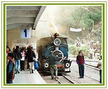 Toy Train, North East Travel Vacations